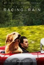 Фільм Очима собаки
