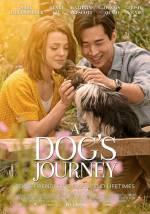 Постери: Фільм - Подорож хорошого пса - фото 9