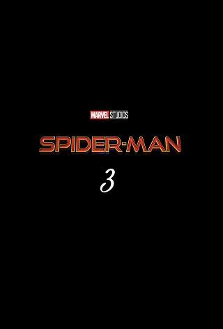 Фильм Человек-паук 3 - Постеры