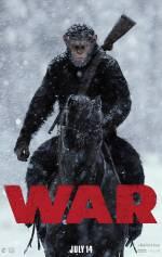 Постеры: Фильм - Война планеты обезьян