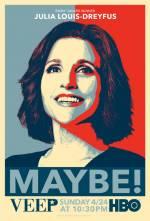 Постеры: Сериал - Вице-президент - фото 3