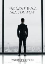 Постеры: Фильм - Пятьдесят оттенков серого - фото 6