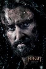 Постеры: Фильм - Хоббит: Битва пяти воинств - фото 30