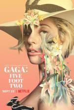 Постеры: Леди Гага в фильме: «Гага: 155 см»