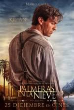 Постери: Маріо Касас у фільмі: «Пальми в снігу»