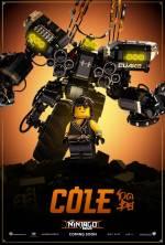 Постеры: Фильм - Lego. Ниндзяго Фильм - фото 19