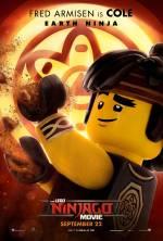 Постеры: Фильм - Lego. Ниндзяго Фильм - фото 29