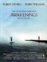Постери: Фільм - Пробудження. Постер №5
