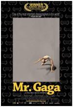 Фильм Мистер Гага - Постеры