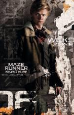 Постери: Фільм - Той, що біжить лабіринтом: Ліки від смерті