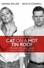 Постеры: Фильм - Кошка на раскалённой крыше