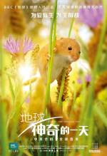 Постери: Фільм - Земля: Один вражаючий день - фото 5