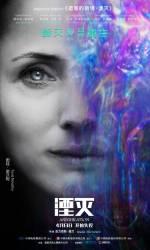 Постеры: Фильм - Аннигиляция - фото 9