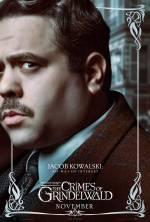 Постеры: Фильм - Фантастические твари: Преступления Гриндельвальда - фото 30