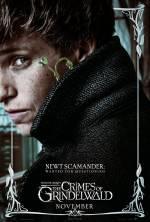 Постеры: Фильм - Фантастические твари: Преступления Гриндельвальда - фото 32