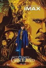 Постеры: Фильм - Фантастические твари: Преступления Гриндельвальда - фото 43
