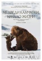 Постеры: Фильм - Медведи. Зарождения жизни - фото 2