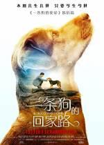 Постеры: Фильм - Путь домой - фото 5