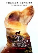 Постеры: Фильм - Путь домой - фото 8