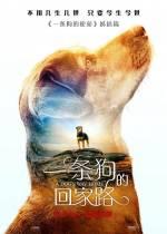 Постеры: Фильм - Путь домой - фото 9