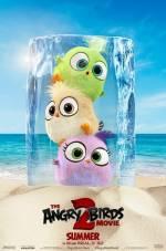 Постери: Фільм - Angry Birds у кіно 2 - фото 6