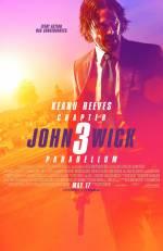Постеры: Фильм - Джон Уик 3 - фото 26