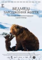 Постеры: Фильм - Медведи. Зарождения жизни