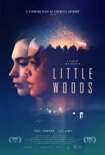 Постери: Лілі Джеймс у фільмі: «Маленькі ліси»