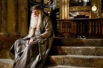 світлини із фильма  - Гаррі Поттер і принц-полукровка - фото 14