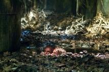 Фото из фильма  - Пандорум - фото 24