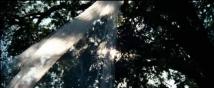 Трейлер к фильму Медовый месяц Камиллы