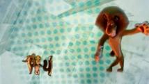 Трейлер к фильму Мадагаскар