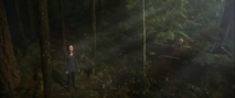 Трейлер к фильму Сумерки. Сага. Рассвет: Часть 2