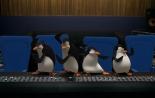 Трейлер к фильму Пингвины Мадагаскара