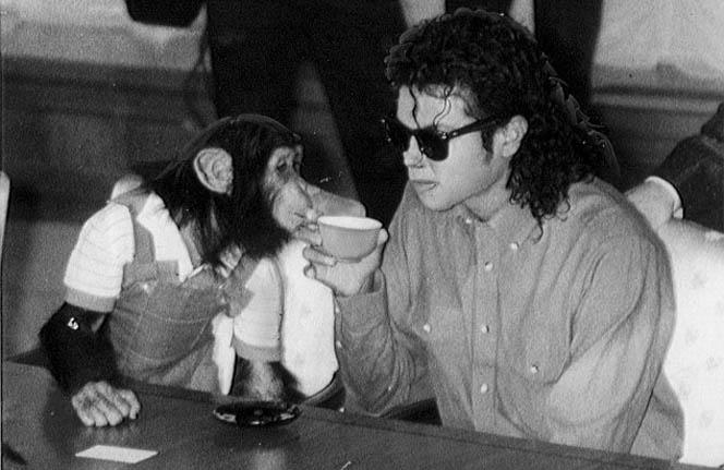 Новости: Шимпанзе Майкла Джексона получит байопик?