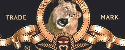 Новости: Больной лев