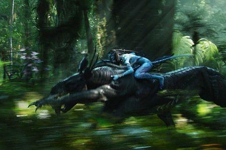 Новости: «Аватар» : «Голубые» в Disney World