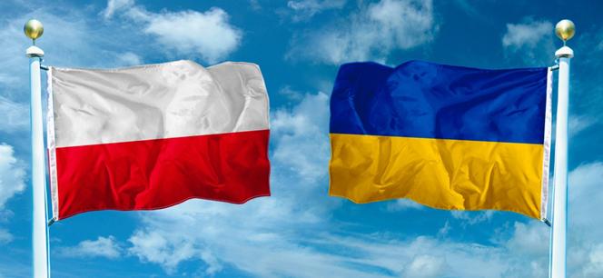 Новости: На ко-продакшн форуме презентуют украинские проекты
