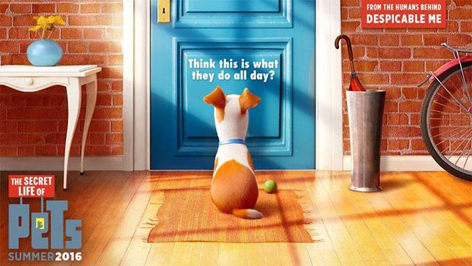 Фильм Секреты домашних животных