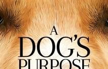Без собаки жизнь - собачья